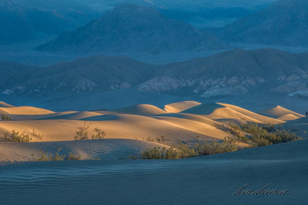 Dunes TD-2.jpg