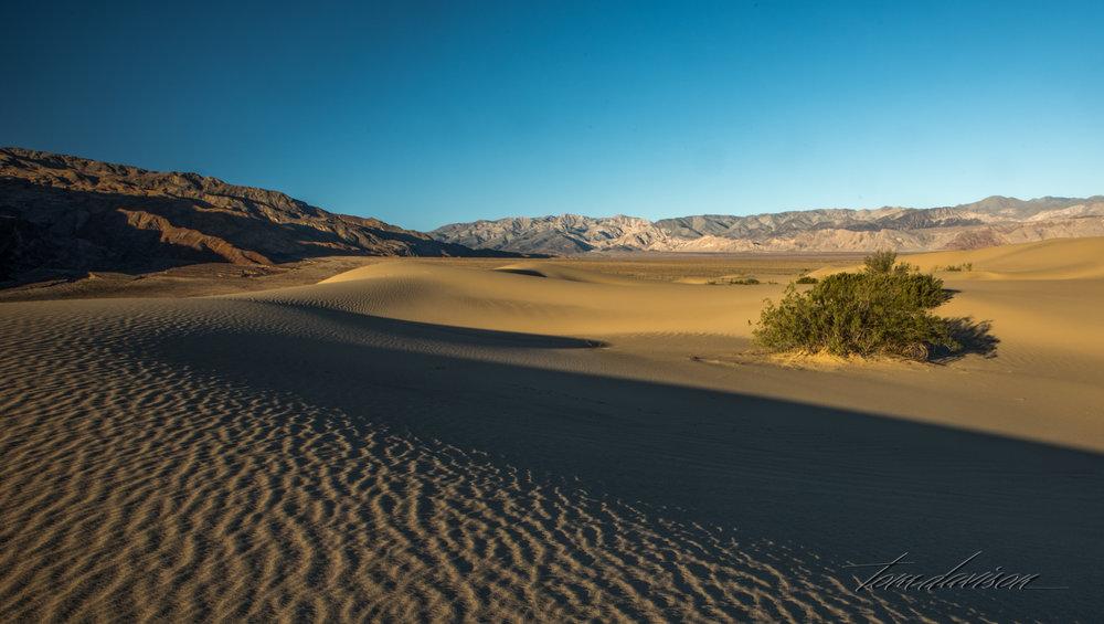 Dunes TD-9.jpg