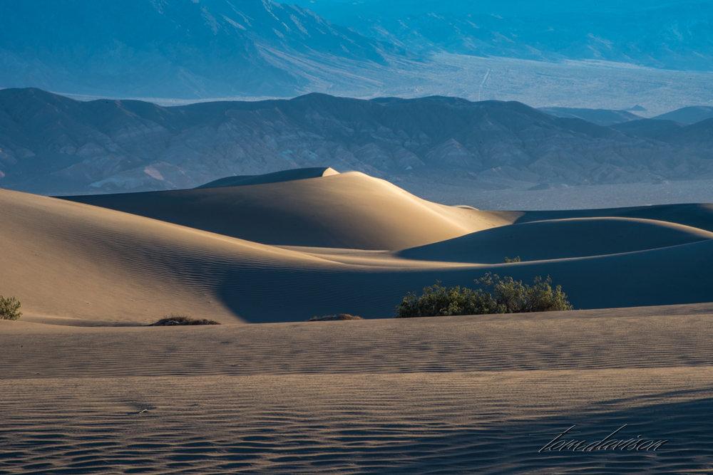 Dunes TD-10.jpg