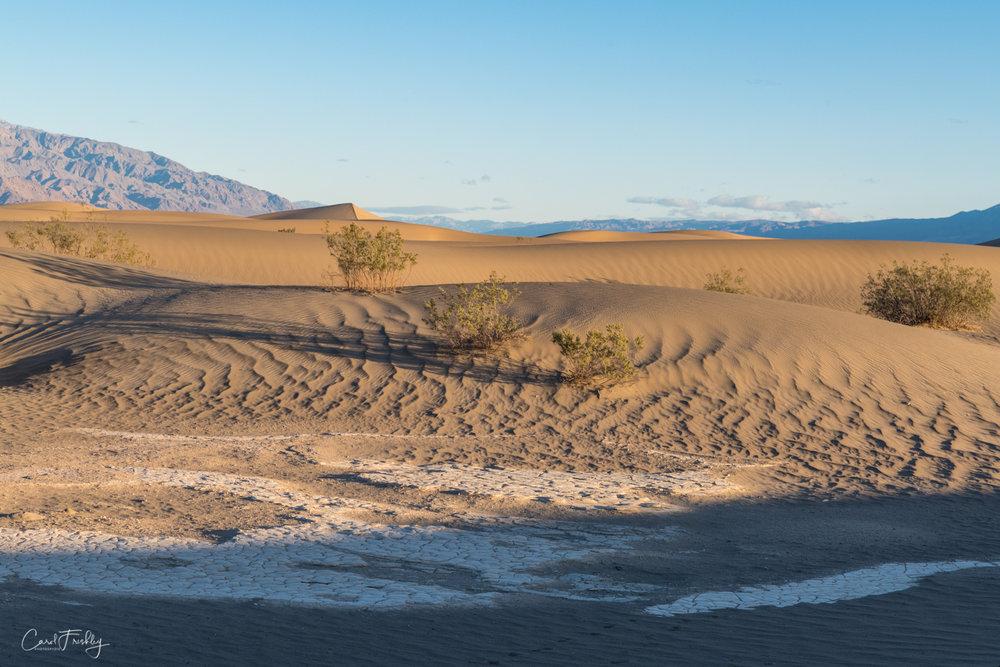 Mesquite Flat Sand Dunes-8.jpg