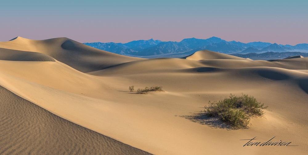 Dunes TD-18.jpg