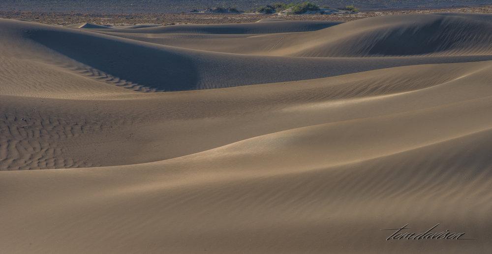 Dunes TD-20.jpg