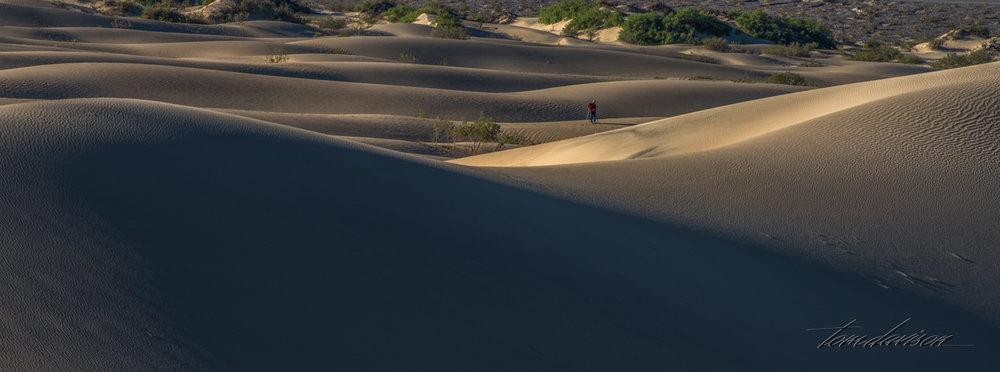 Dunes TD-21.jpg