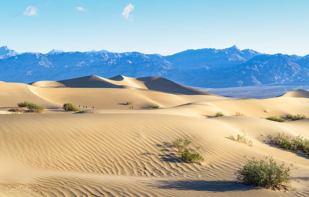 Mesquite Flat Sand Dunes-14.jpg