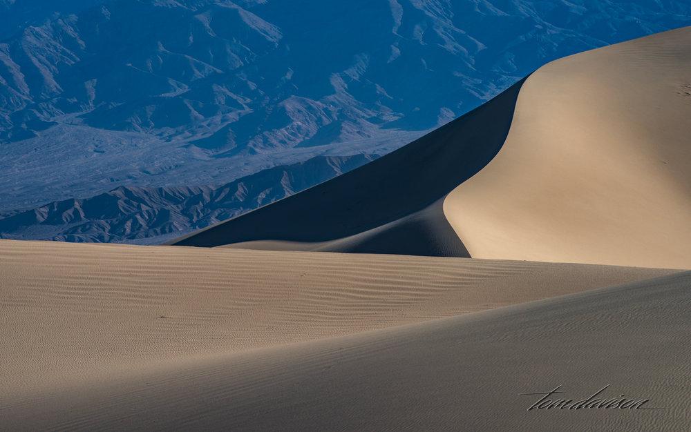 Dunes TD-26.jpg