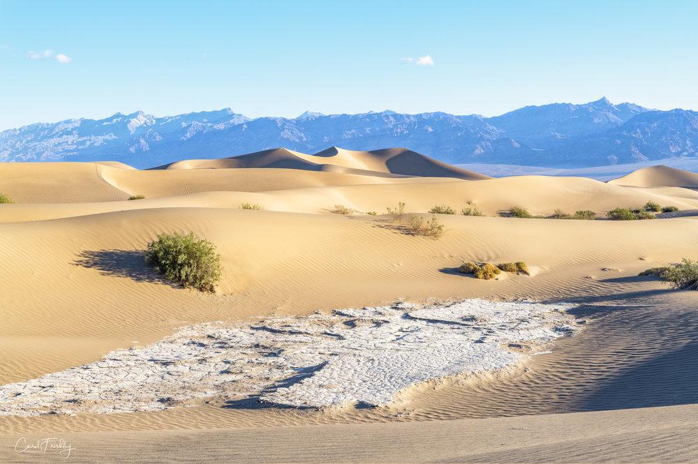Mesquite Flat Sand Dunes-16.jpg
