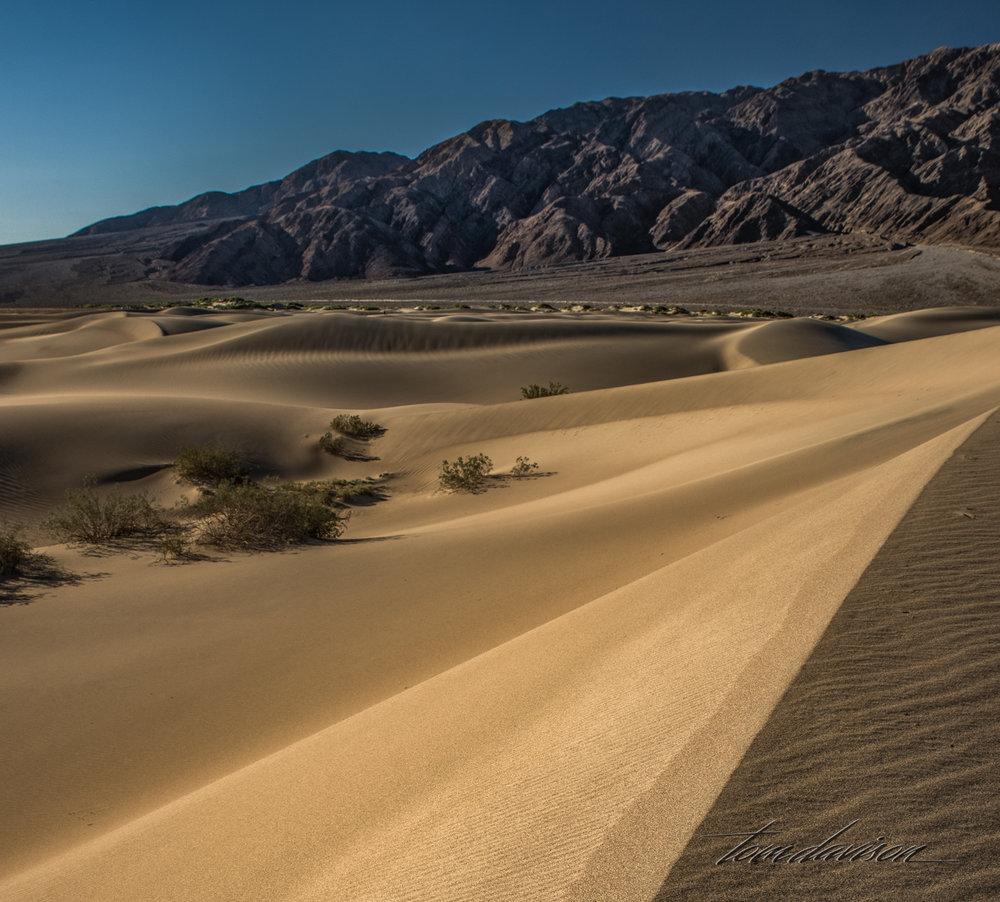 Dunes TD-32.jpg