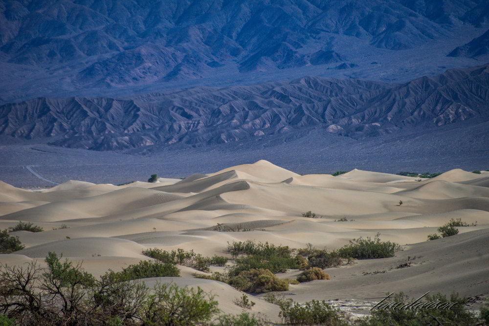 Dunes TD-33.jpg
