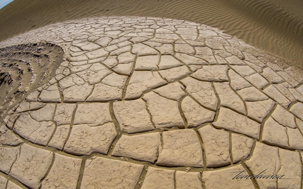 Dunes TD-41.jpg
