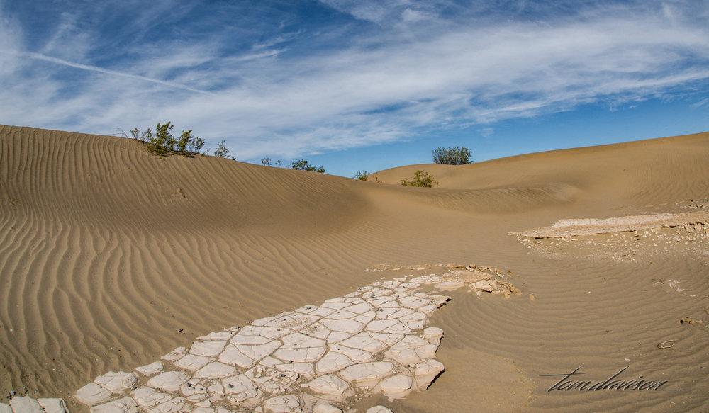 Dunes TD-36.jpg