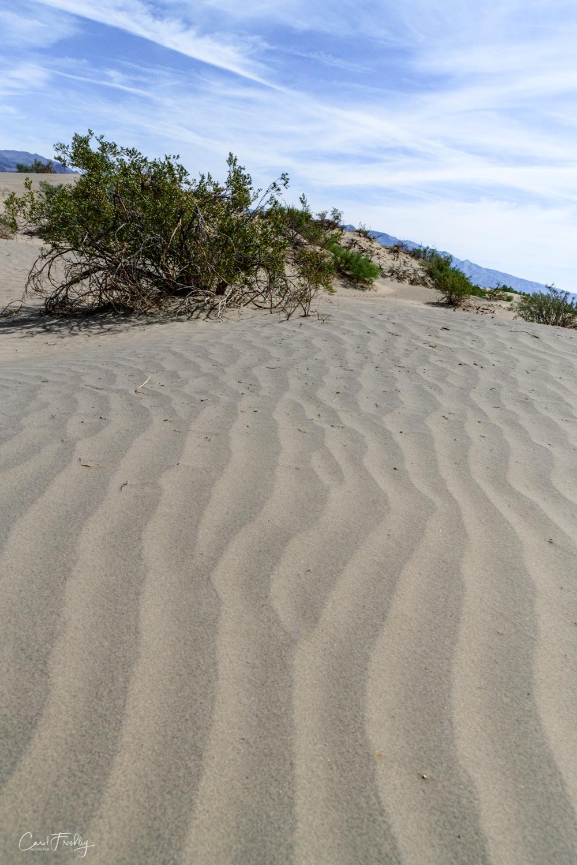 Mesquite Flat Sand Dunes-36.jpg