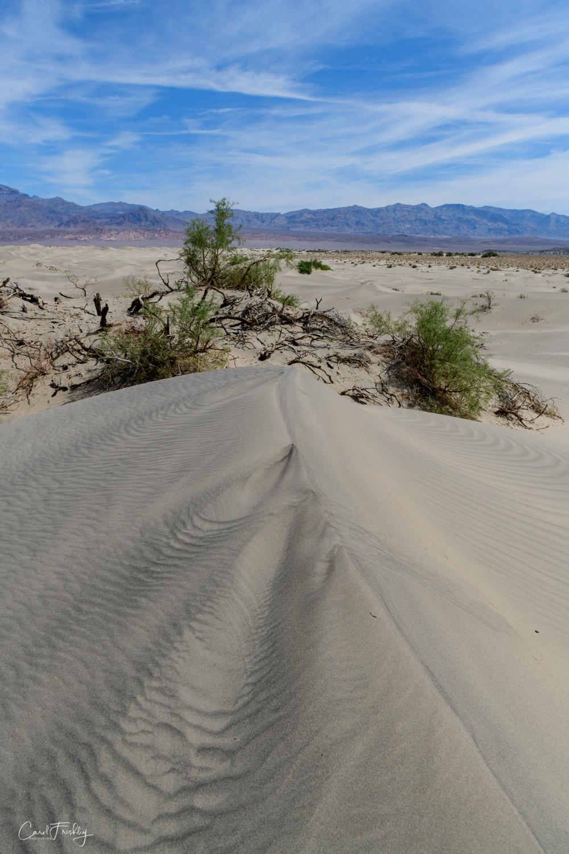 Mesquite Flat Sand Dunes-37.jpg