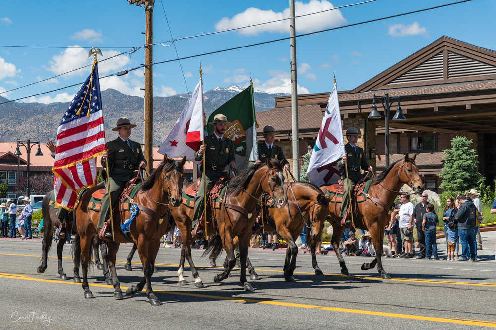 Horses of all kinds and donkeys are also represented.  This group represents the Forest Service, a big part of life around here.