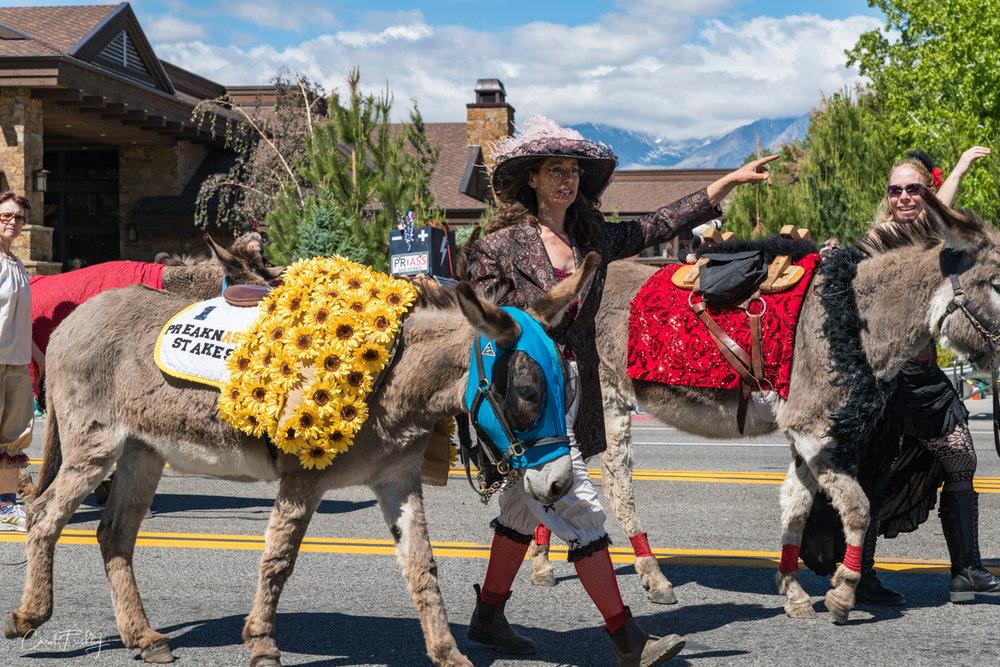 Mule Days Parade-5.jpg