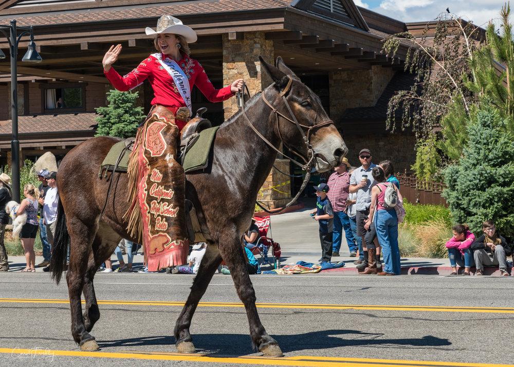 Mule Days Parade-10.jpg