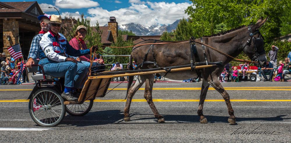 Mule Days TD-36.jpg
