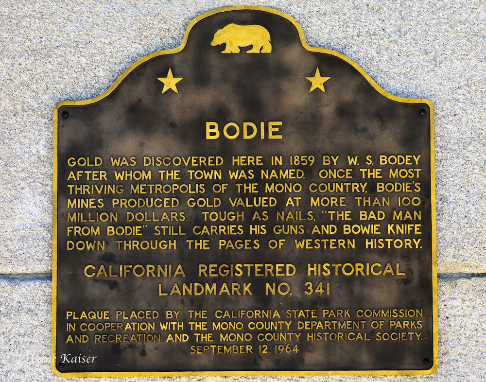 DK Bodie-2.jpg