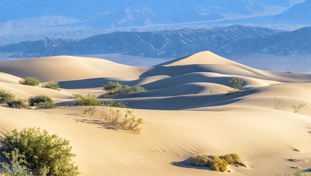 Mesquite Flat Sand Dunes in Death Valley