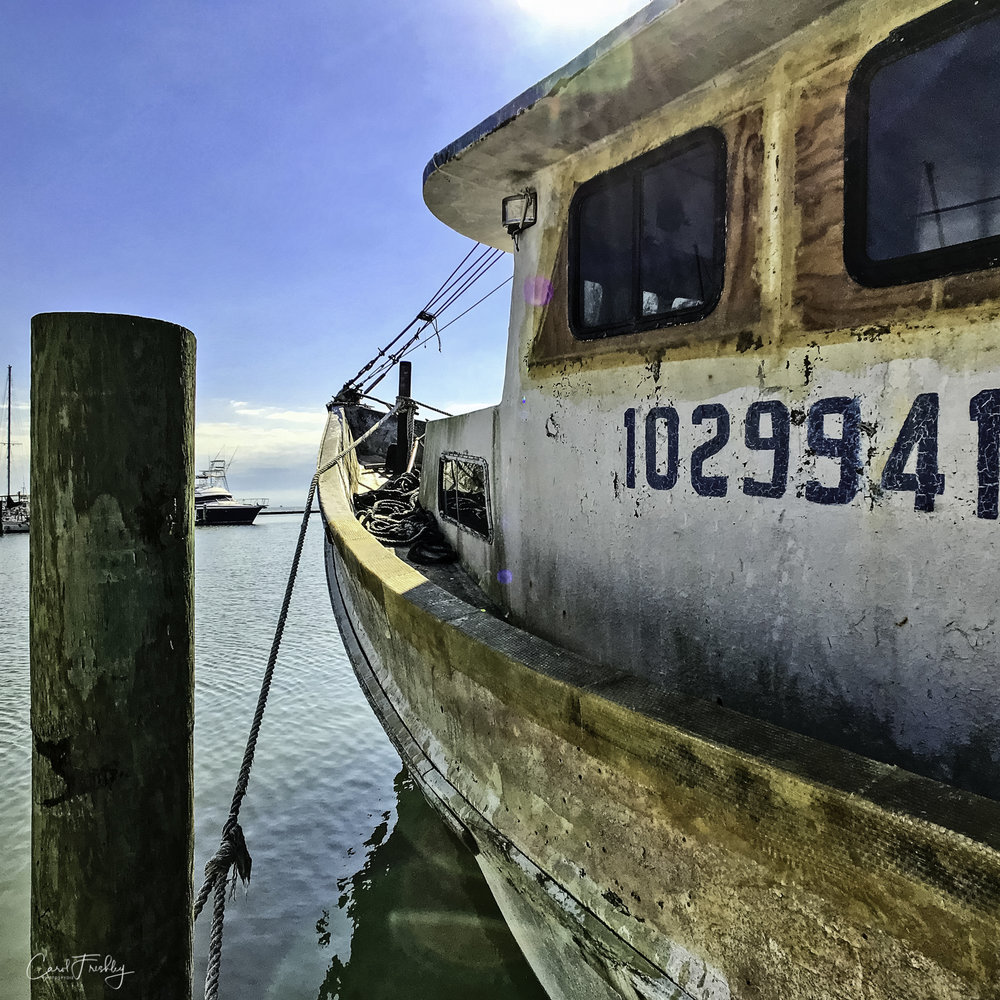 This old boat is still working. There is not enough money in oysters and shrimp to allow owners to spend money making them 'pretty'. If it floats, a boat is put to work!