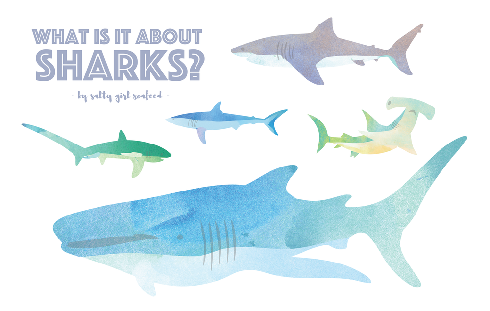 sharks sustainable seafood