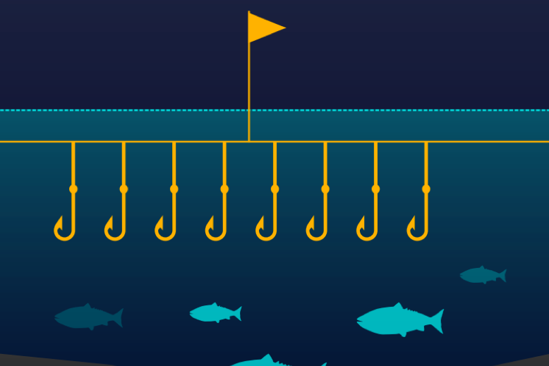 Gear Type: Longline   Longlining utilizes a central fishing line (1-50 miles long) that incorporates a series of smaller, baited, hooks spaced at regular intervals.  Graphic:© Ocean Health Index