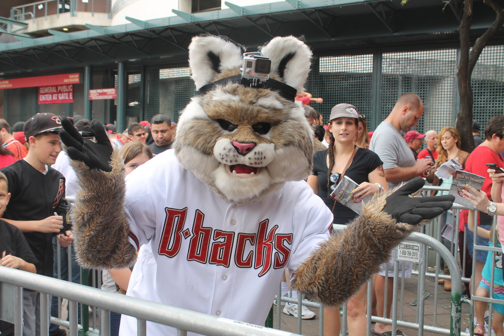 D. Baxter the Bobcat