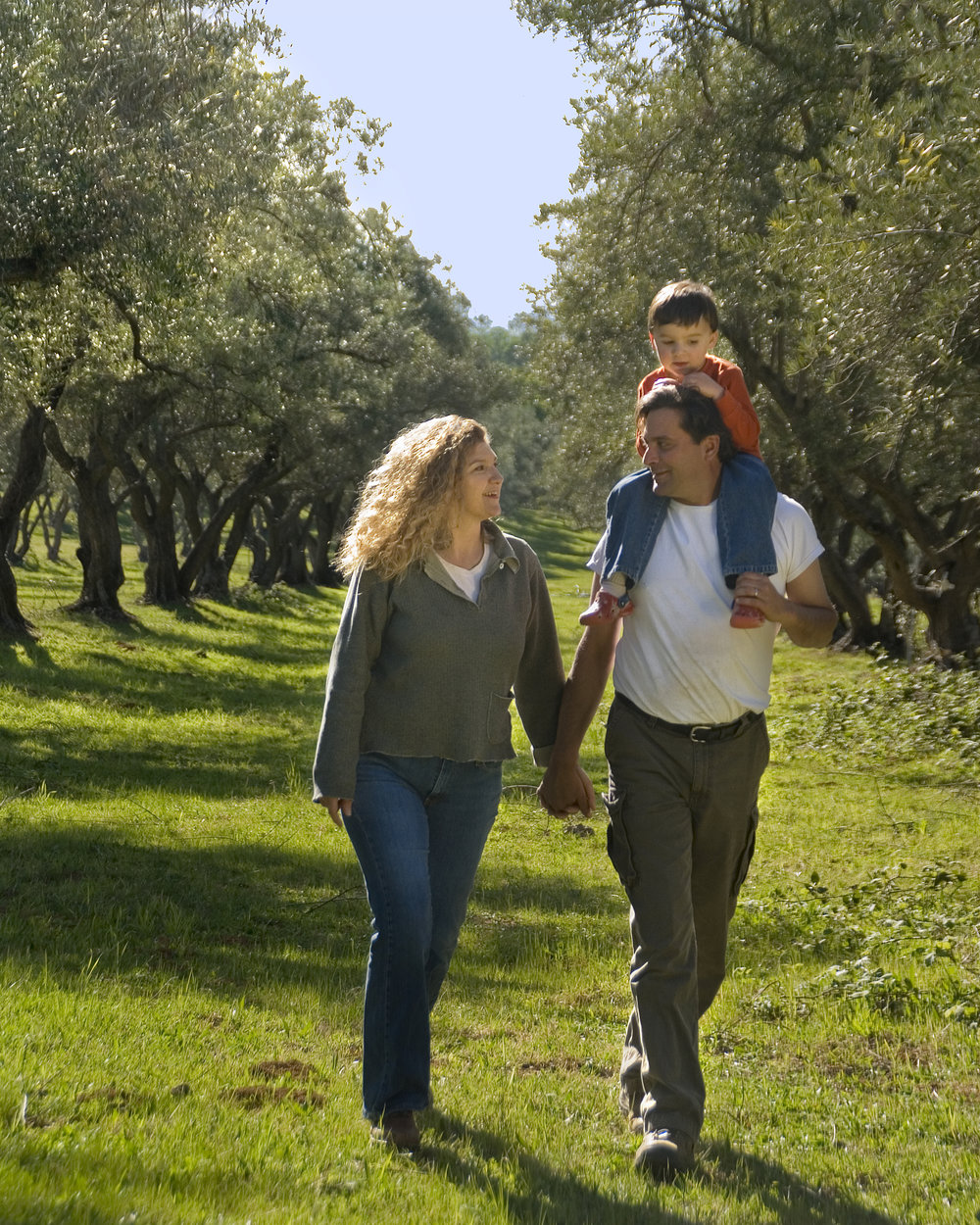 Calolea Olive Oil