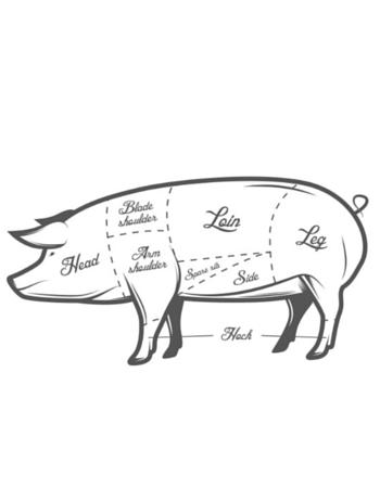 Salumi Diagram