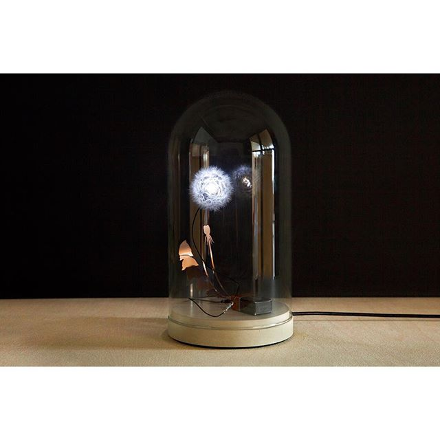 The most #poetic piece in our #collection is now #available with a #powercable. 🔌  This #version of the #dandelight contains a real #dandelion on a #concretebase and a #glassdome. The #base is connected with a #powercable. #hoorayfornomorechangingbatteries 🔋#justintimeforchristmas 🎁🎄 • www.the-game-online.com/lighting • #thegameonline #thegamedesignstore #onlineshop #brussels #design #light #studiodrift #lonnekegordijn #dutchdesign #buyonline #christmasgifts #thegiftguide