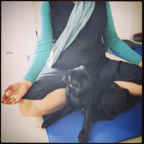 Bring Your Dog To Yoga.jpg