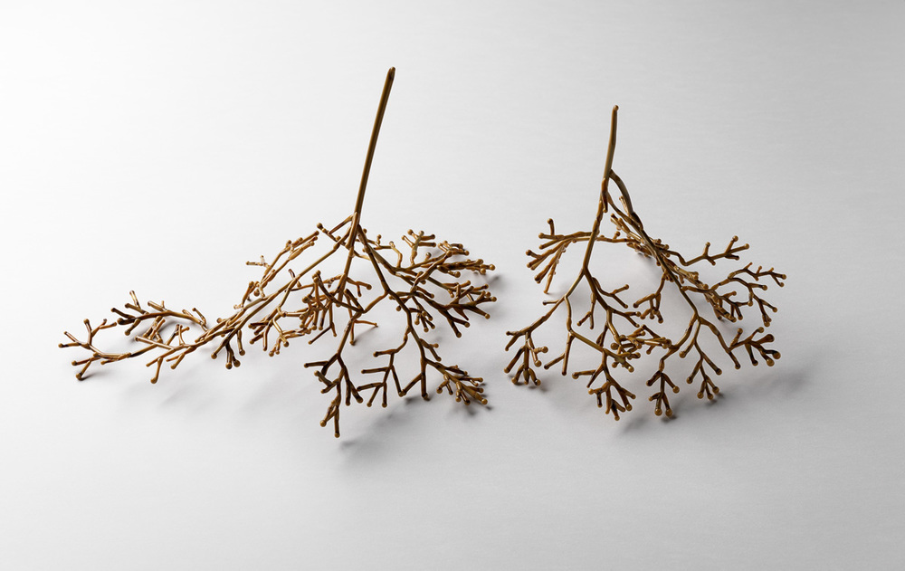 Conceptual Flowering Plant Series,