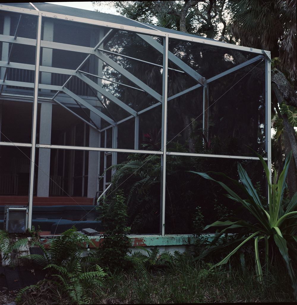 florida screen2.jpg