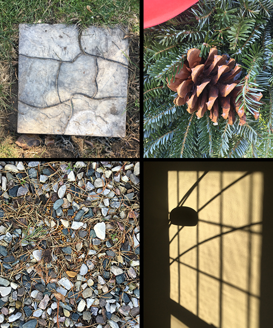 We went to two different tree stands to find the right tree for our home. As we searched I found a STONE TILE, a wreath with a PINE CONE and some exciting PEA GRAVEL. After we came back, I noticed the bright sun casting all kinds of SHADOWS on our wall (can you tell what kind of windows we have?).