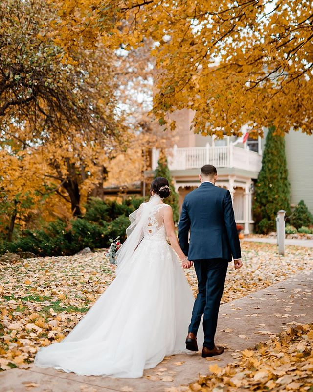You can see a little preview of our last wedding of the season in our Instagram story 📸🥂 such a lovely couple on a  dry mild November day and no rain! 🤘🏼 . Super thankful the winds hadn't picked up before this day, so much colour left on the trees but I'm pretty sure it all@fell@down the next day 😂 seriously lucky!🍁🍂 . Flowers: @snowberrybotanicals Venue: @millcroftinnandspa