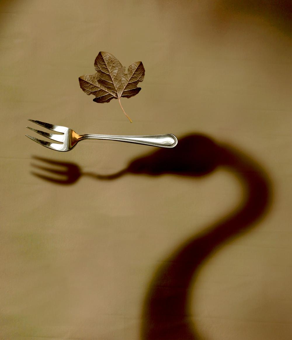 DINING_EVE_2.jpg