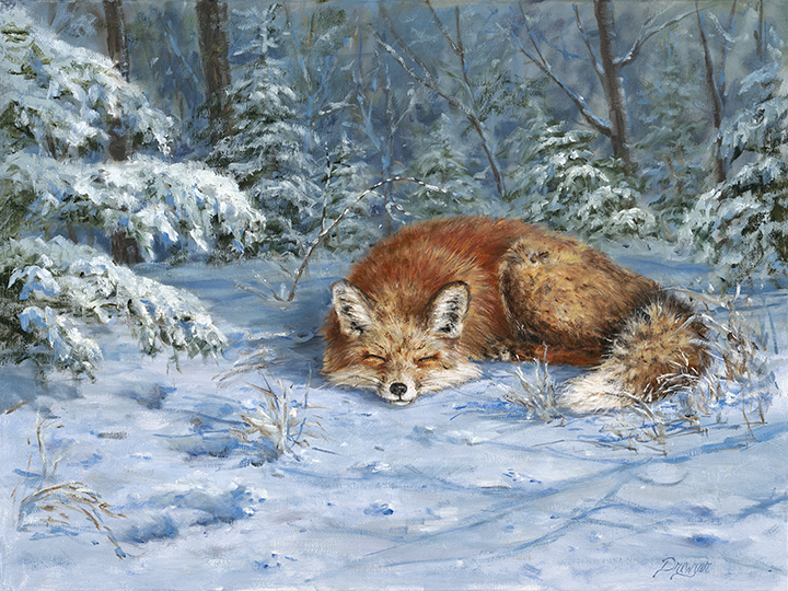 Drewyer_2_Snow Snooze_18x24 OIL.jpg