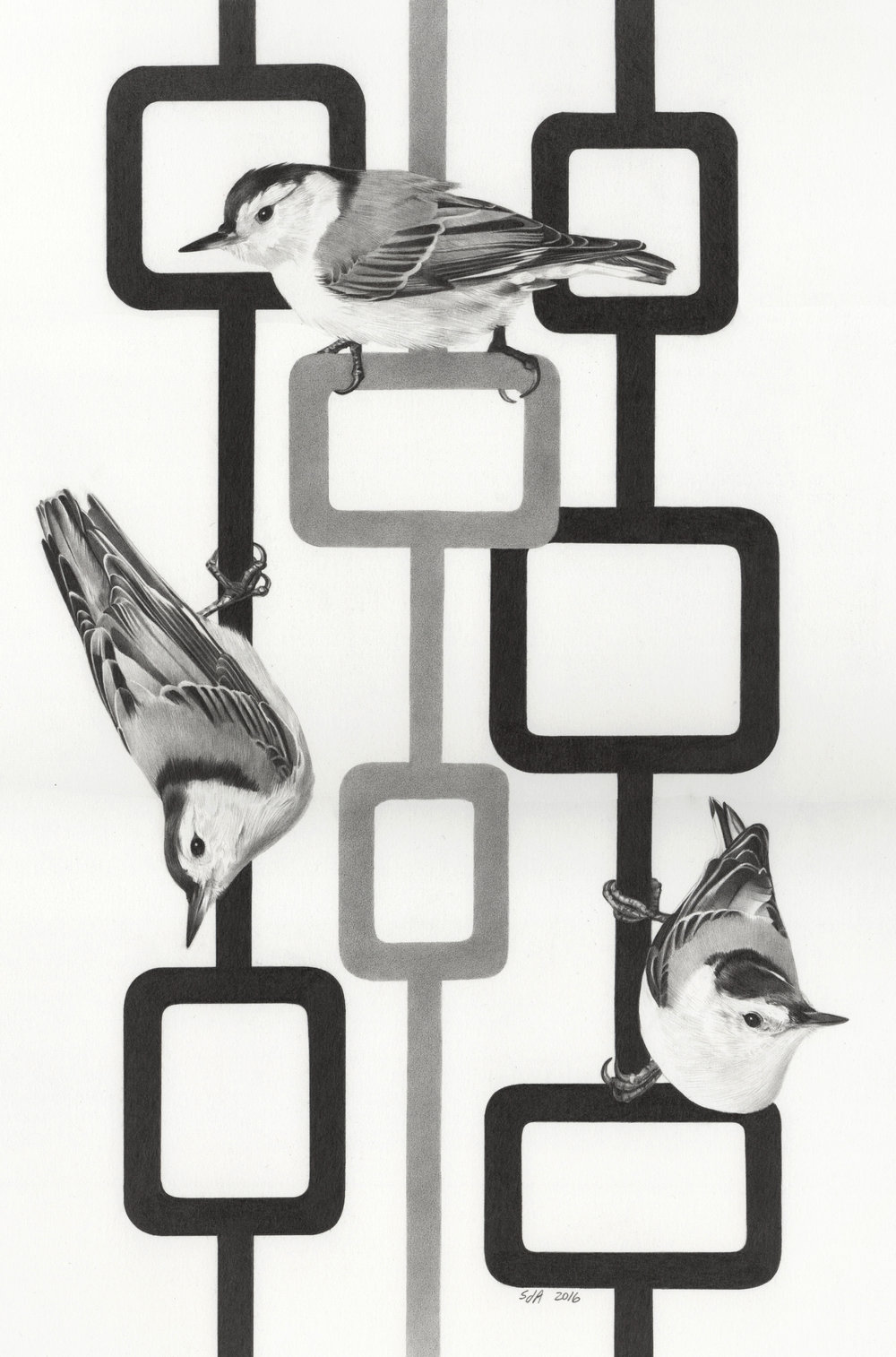 33 - Mod Nuthatches, 14 x 9.25, Graphite