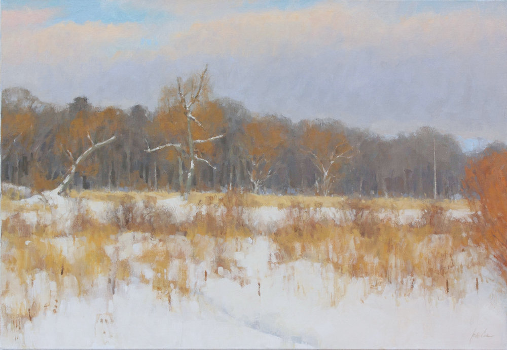 58 - Swamp Willows, Deep Snow, 18 x 26, Oil