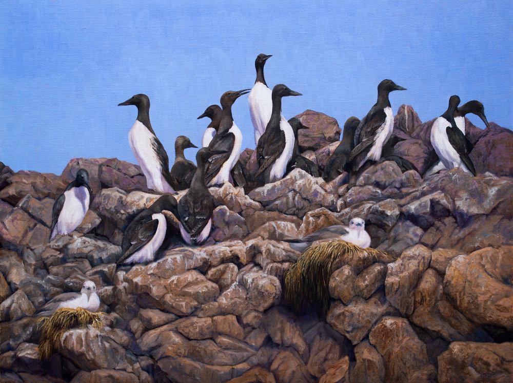 26 - Island Loomerie, 18 x 24, Oil