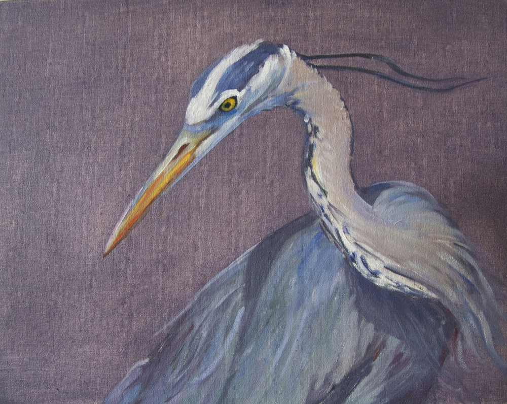 56 - Study, Blue Heron, 8 x 10, Oil