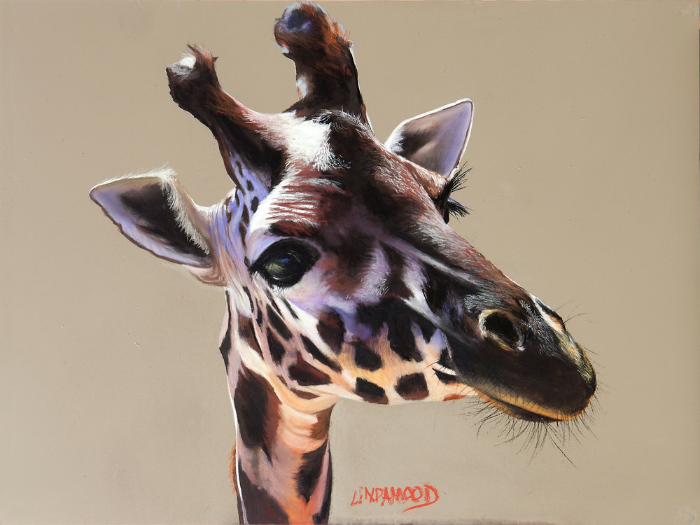 79 - Just Giraffe, 18 x 24, Pastel