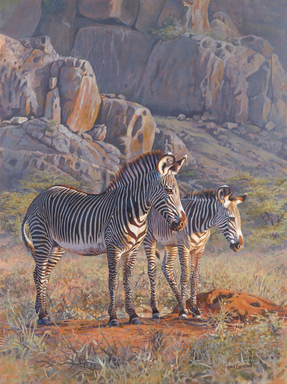 87 - Samburu Grevys, 18 x 24, Acrylic