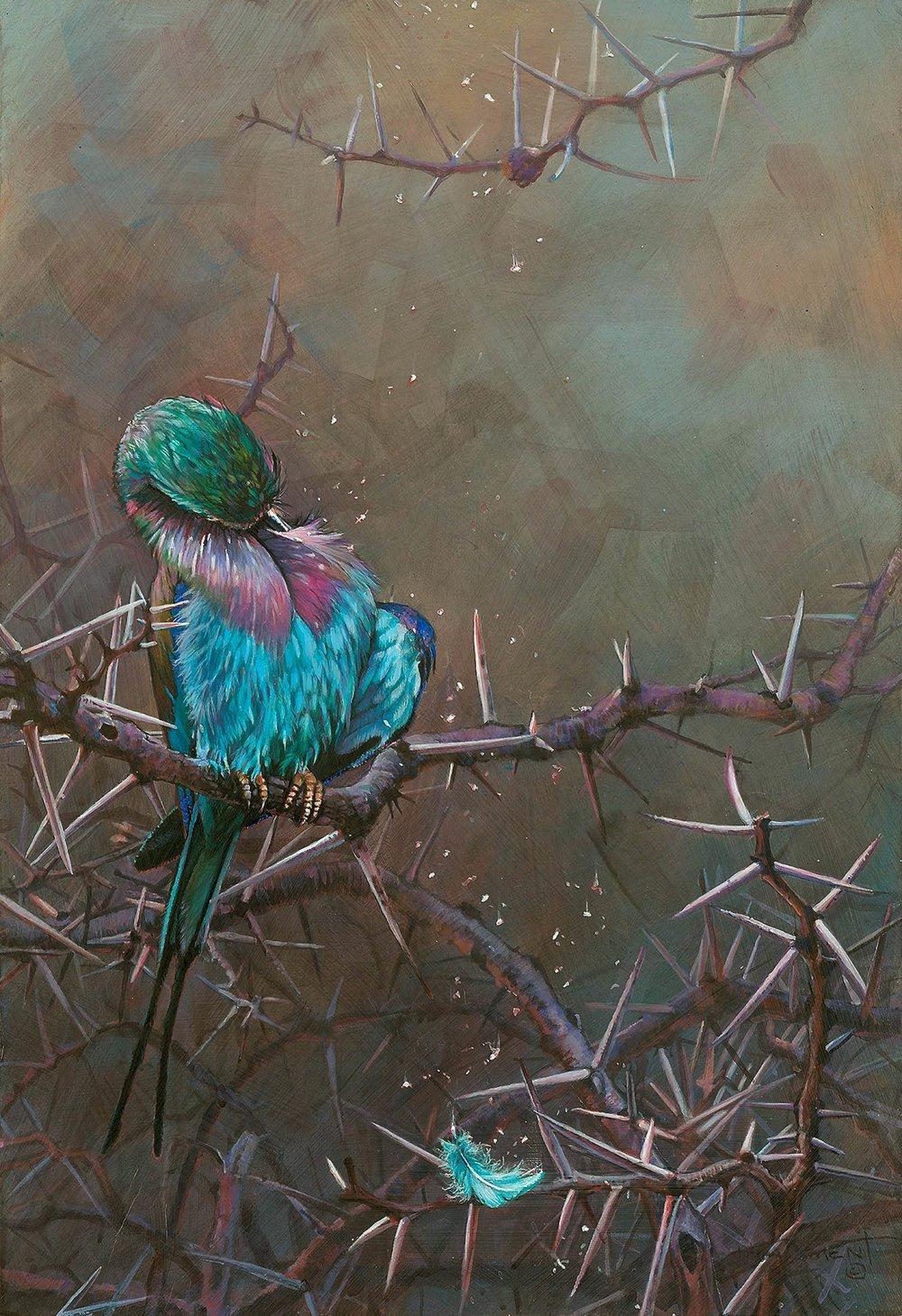 91 - Thornbird, 16 x 24, Acrylic