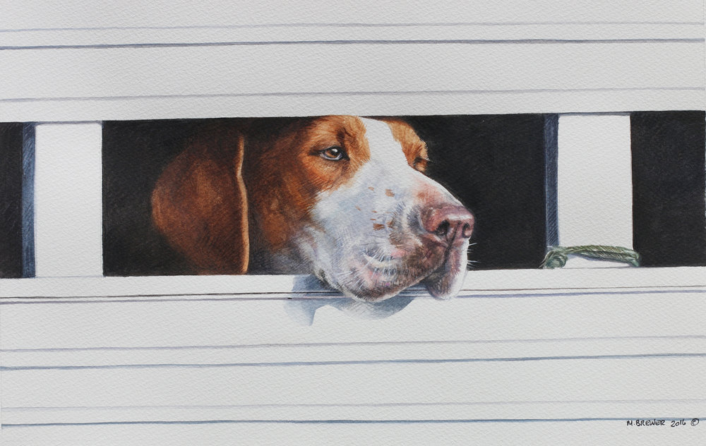 92 - Trailer Hound, 8.5 x 13.5, Watercolor