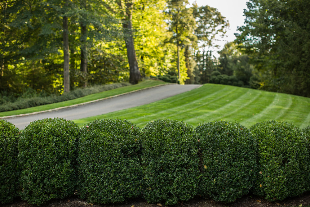 Lawn Maintenance, Fairfield County, CT