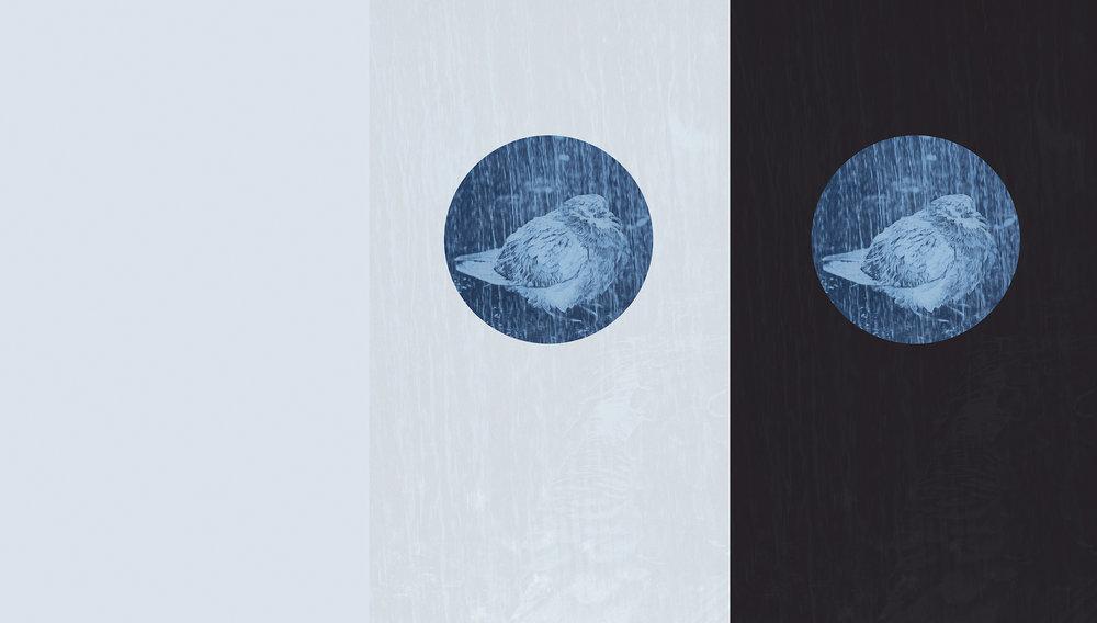 Trace (11), 2019  Pigment print, Framed, 44x25cm