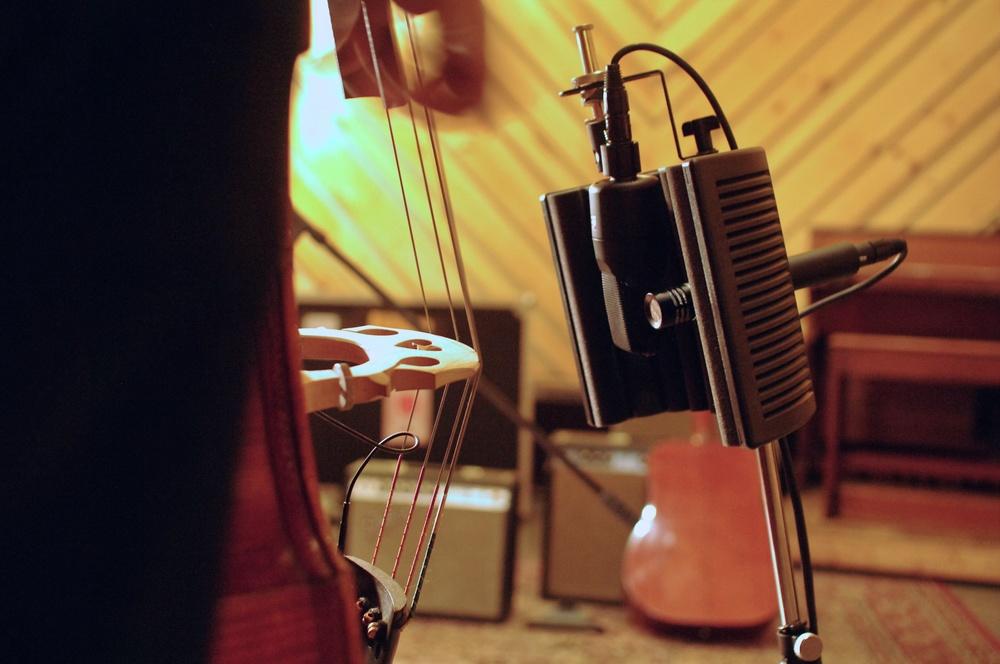 bass3.jpg