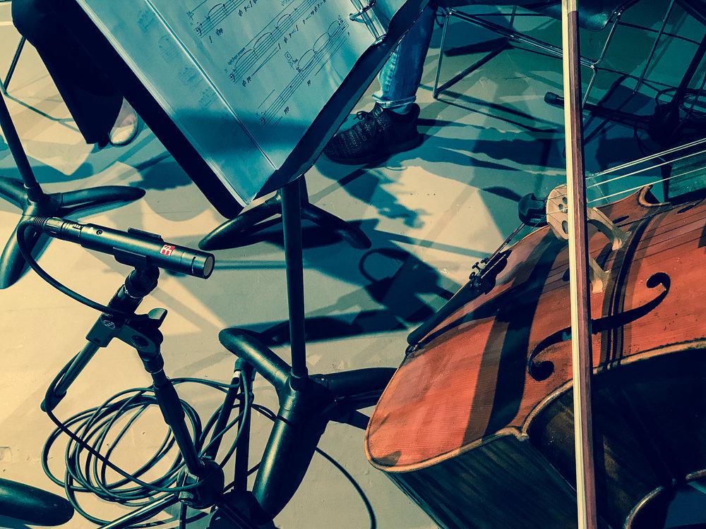sE8 - Cello