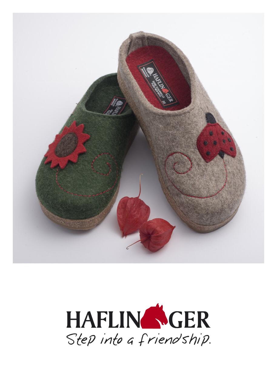 haflinger2.jpg