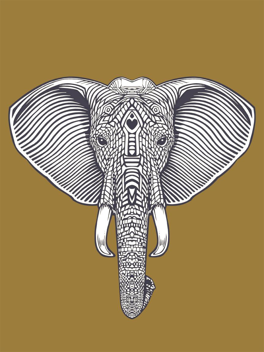 elephantbw.jpg